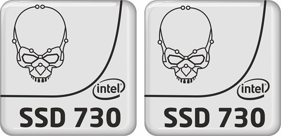 Picture of Intel SSD 730 Badges
