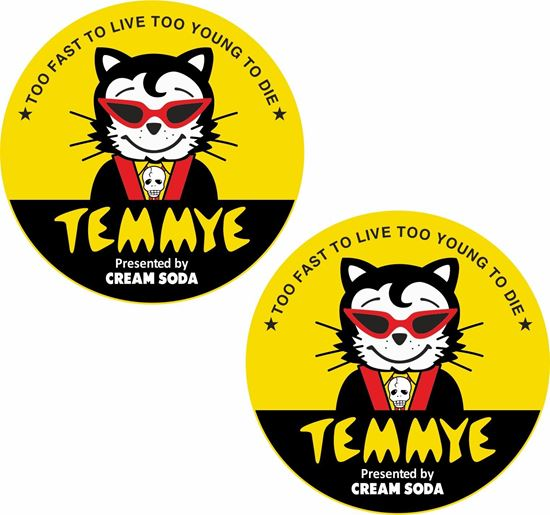 Picture of Temmye Decals / Stickers