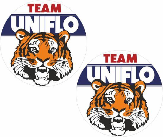Picture of ESSO Team Uniflow Decals / Stickers