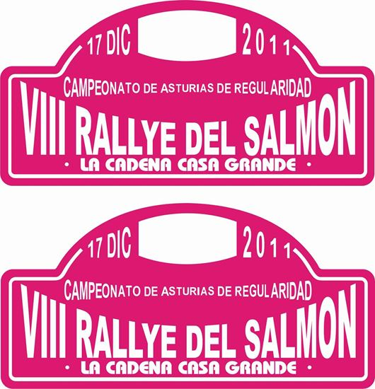 Picture of VIII Rallye Del Salmon Decals / Stickers