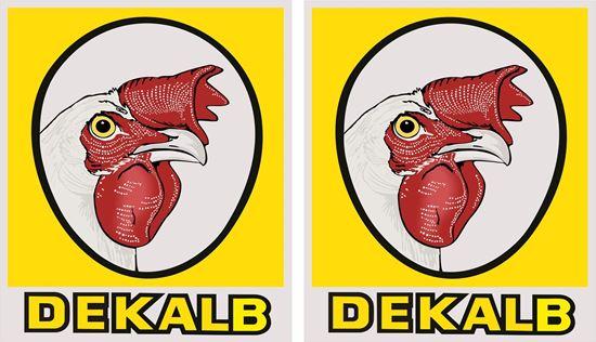 Picture of Dekalb Decals / Stickers