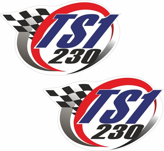 Picture of TS1 230 Decals / Stickers