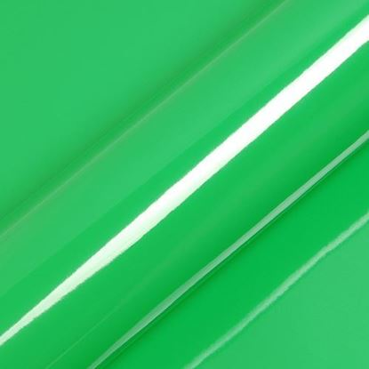 Picture of Fern Gloss  - S5360B 610mm