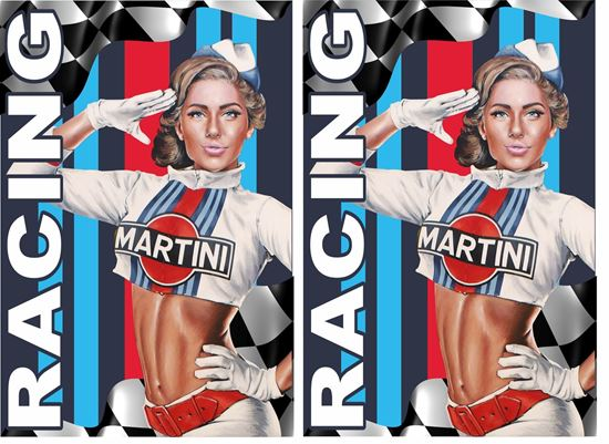 Picture of Martini Racing Decals / Stickers