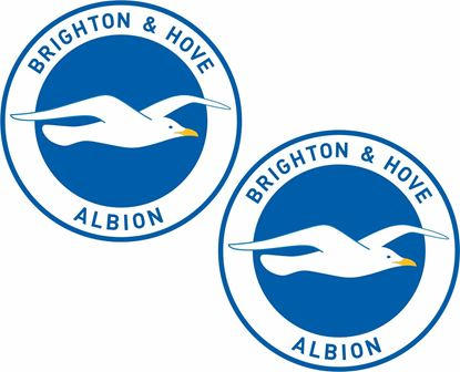 Picture of Brighton and Hove Albion FC  Decals / Stickers