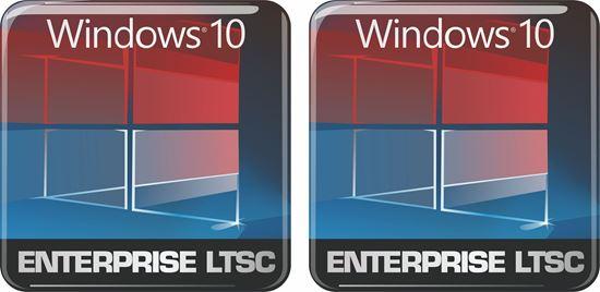 Picture of Windows 10 Enterprise LTSC Gel Badges