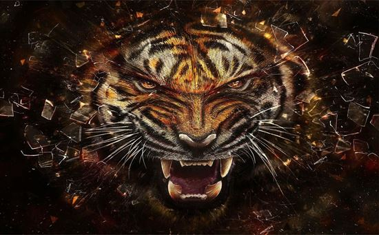 Picture of Tiger  Vinyl Wrap Sheet